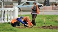 В Симферополе начали ухаживать за зелеными насаждениями вдоль магистралей