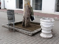 Из урн центрального кольца Севастополя будут вывозить мусор 10 раз в день
