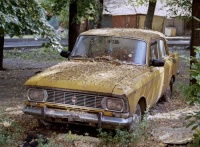 В Ялте наконец-то серьезно возьмутся за бесхозные автомобили