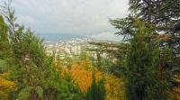 Минприроды и Крыминформ запустили ежегодный опрос по определению самого экологически чистого города