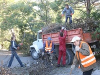 Ялтинцы приняли участие во Всекрымском экологическом субботнике по озеленению