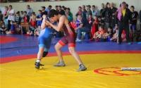 В турнире по греко-римской борьбе в Керчи принимают участие 375 спортсменов
