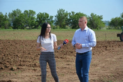 Участник приоритетного проекта «Терруар-Севастополь» приступил к закладке новых виноградников
