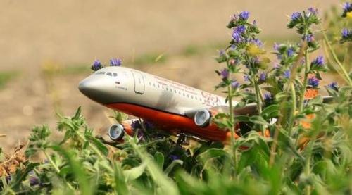 В аэропорту Симферополь пройдет выставка аэродромной спецтехники