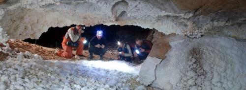 Палеонтологи обнаружили под Симферополем древнейшую в России ископаемую пещерную фауну