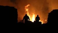 Опасная жара: в Крыму объявлено экстренное предупреждение