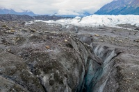 Эксперты рассказали как спасти уникальные экологические системы Севера