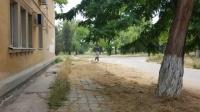 До жухлой травы в Керчи наконец добрались косари