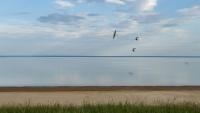 За 25 млрд рублей: в Крыму восстановят крупнейшее водохранилище