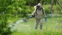 В Ялтинском горно-лесном природном заповеднике будет проведена противоклещевая обработка территории