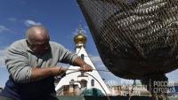 В Крыму прогнозируют рекордный за пятилетку урожай аквакультуры