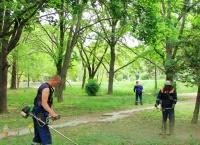 В парках и скверах Симферополя косят траву
