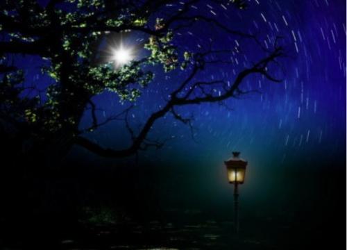Керчанка просит вернуть звёздное небо и погасить фонари в городе