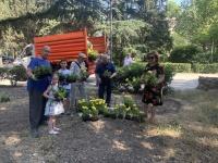 Цветы для Ялты