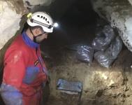 """Кости древнего носорога обнаружили в пещере """"Таврида"""" палеонтологи"""