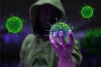 Севастопольцы заражаются коронавирусом неизвестно где