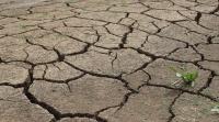 Режим ЧС введен в Мирном под Симферополем из-за отсутствия воды