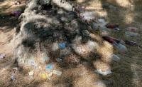 Казаков на вас нет: Керчан возмущают выпивающие в Комсомольском парке подростки