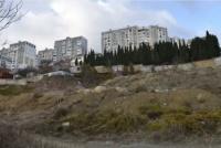 Ялтинцы требуют построить в городе ещё одну школу