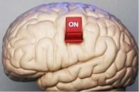 Предпринимателям Керчи грозит короновирусное банкротство, если не включить мозги