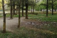 Мусорная поляна: керчане не довольны работой коммунальщиков