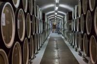 В Крыму активно развивается винный туризм