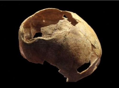 В Крыму нашли череп со следами трепанации эпохи бронзы