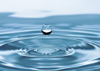Власти попросили жителей Ялты экономно расходовать воду