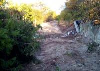 В Севастополе соседские войны разыгрываются за лес и дорогу