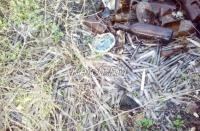 Ртутные градусники на свалке в Керчи принадлежали медицинским организациям, - Минприроды