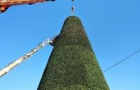 Как выглядит новая новогодняя елка Симферополя
