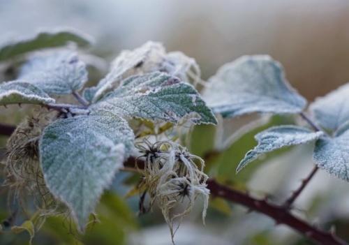 На Крым надвигается аномально холодная погода