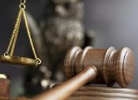 Керчанина будут судить за выращивание 68 кустов конопли