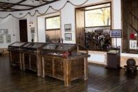Путин поздравил Евпаторийский краеведческий музей со 100-летием