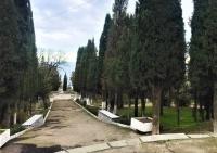 Власти Ялты взяли Пионерский парк Алупки в «круговую оборону»