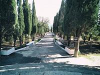 Власти Ялты присвоят Пионерскому парку в Алупке особый статус