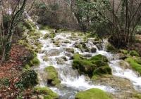 Водопады и горные источники пополнили запасы воды в Ялте