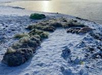 Группа браконьеров задержана на берегу Симферопольского водохранилища с тонной рыбы