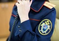 Следком проверит информацию из соцсетей в Крыму о роженице-сироте