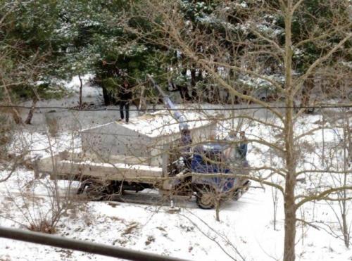 Севастополец обнаружил в лесу растущие гаражи