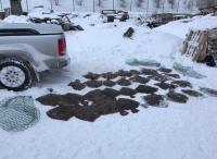 На крымских рыбаков возбудили уголовное дело за незаконный вылов в запретной зоне