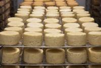 В 2020 году в Крыму увеличилось производство сливочного масла и сыров