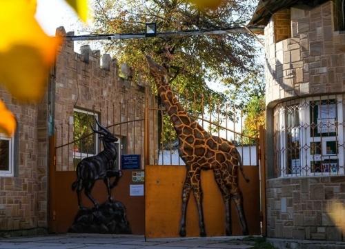 Прокуратура выявила многочисленные нарушения в зооуголке Симферополя