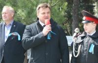 На набережной Ялты высадили крымскую сосну