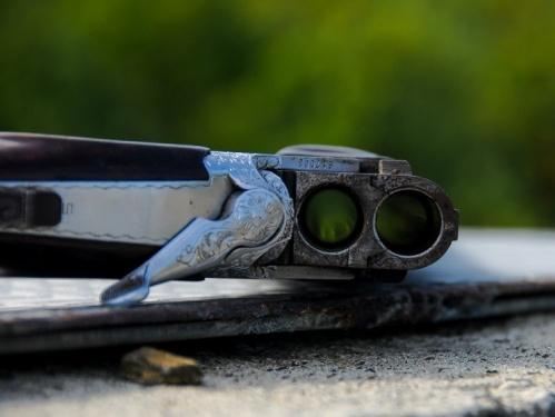 В Севастополе введён полный запрет на охоту