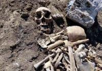 В Крыму при прокладке газопровода нашли человеческие кости