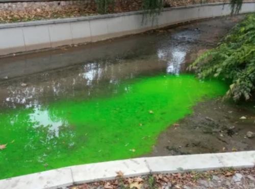 Река Салгир внезапно позеленела в черте Симферополя