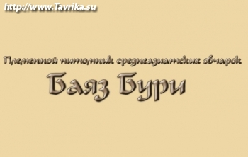 Питомник среднеазиатских овчарок Баяз-Бури
