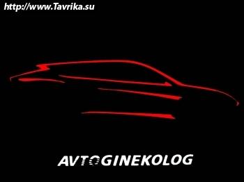 """Автосервис """"Avtoginekolog"""" (Автогинеколог)"""