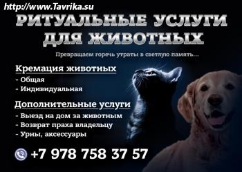 Ритуальные услуги для животных